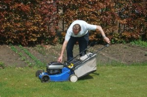 Company performing lawn care in Chicago